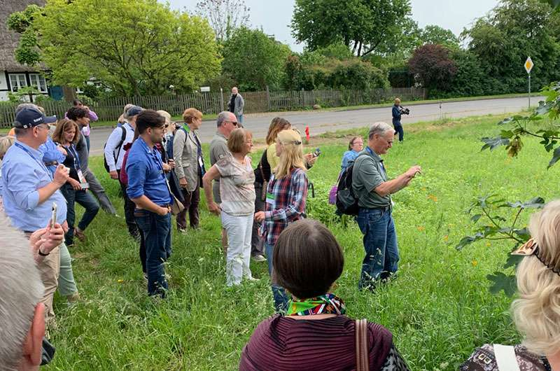 rotary bee spotters